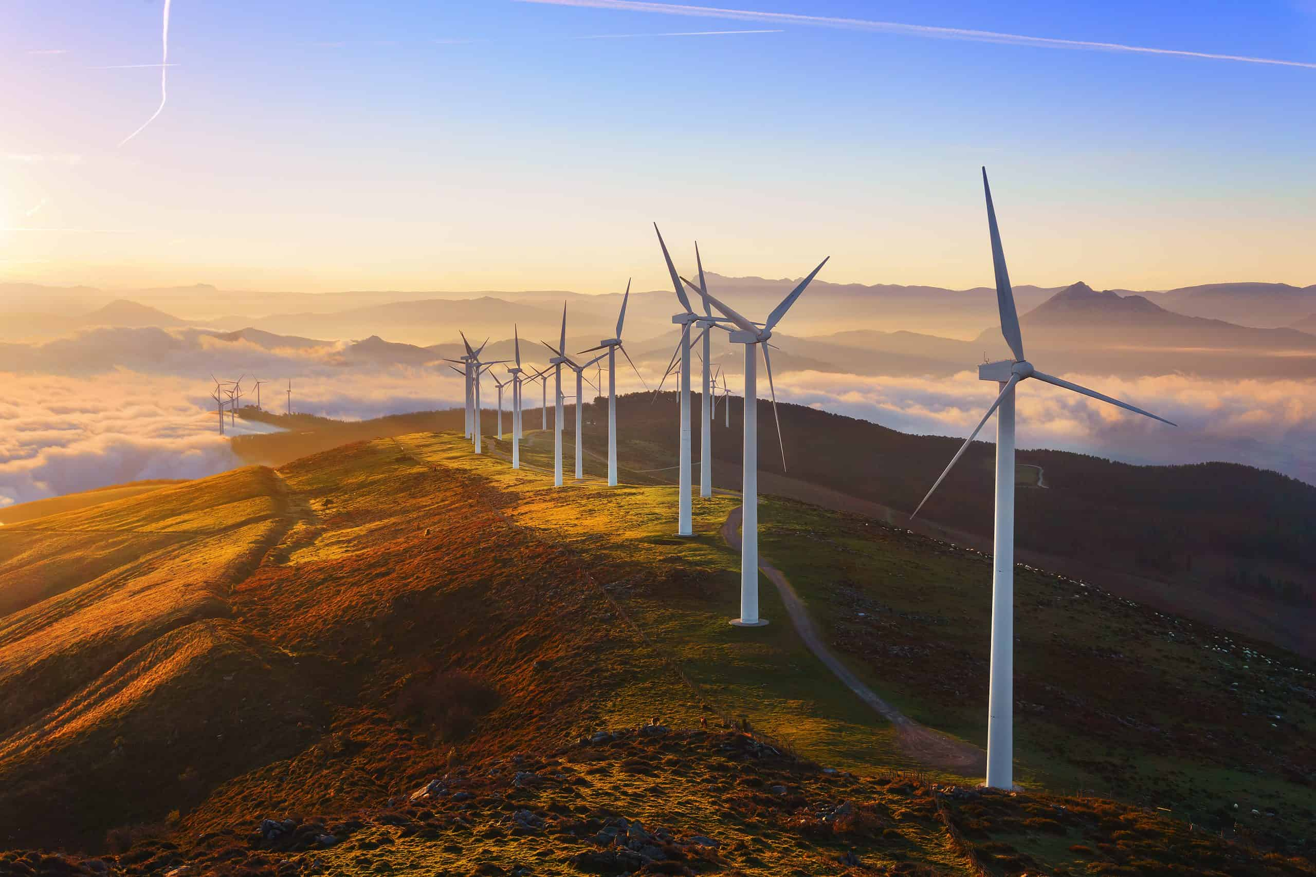 Record Amount of Renewable Energy Consumed in the U.S. in 2020